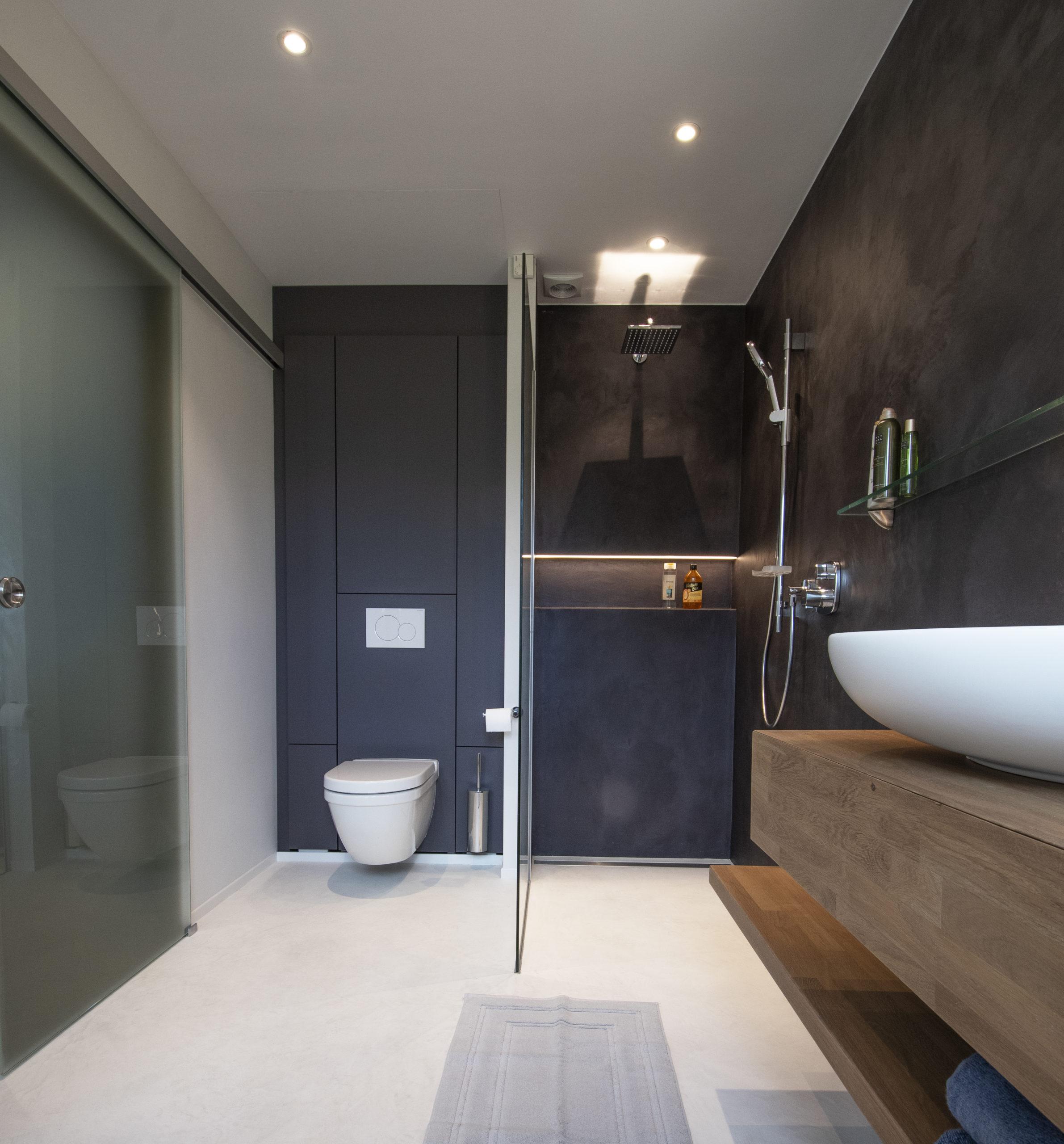 intégration wc/porte verre coulissante/mortex sol et murs douche